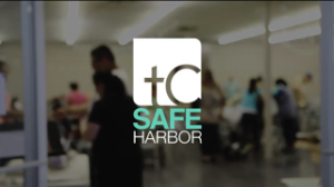 safe harbor 13